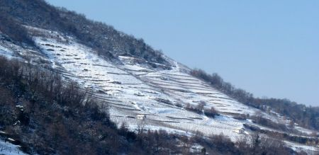 Mauves under the snow. Mauves is the birthplace of the traditional Saint-Joseph Northern Rhône wines. Paradis vineyards