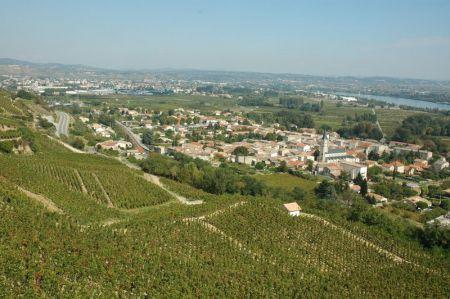 Mauves sur Rhône, le berceau de l'Appellation Saint-Joseph depuis 1956